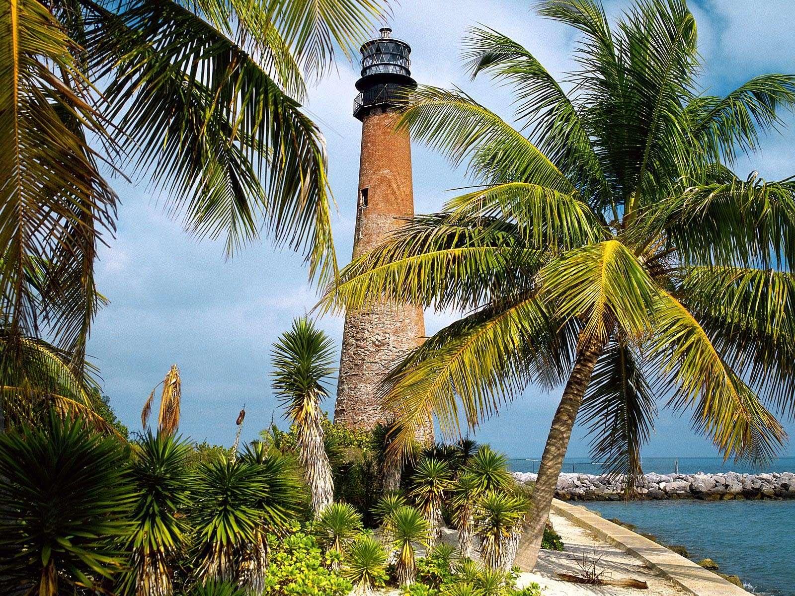 Foto palmeras y faro a la orilla del mar para editar - Para disenar fotos ...