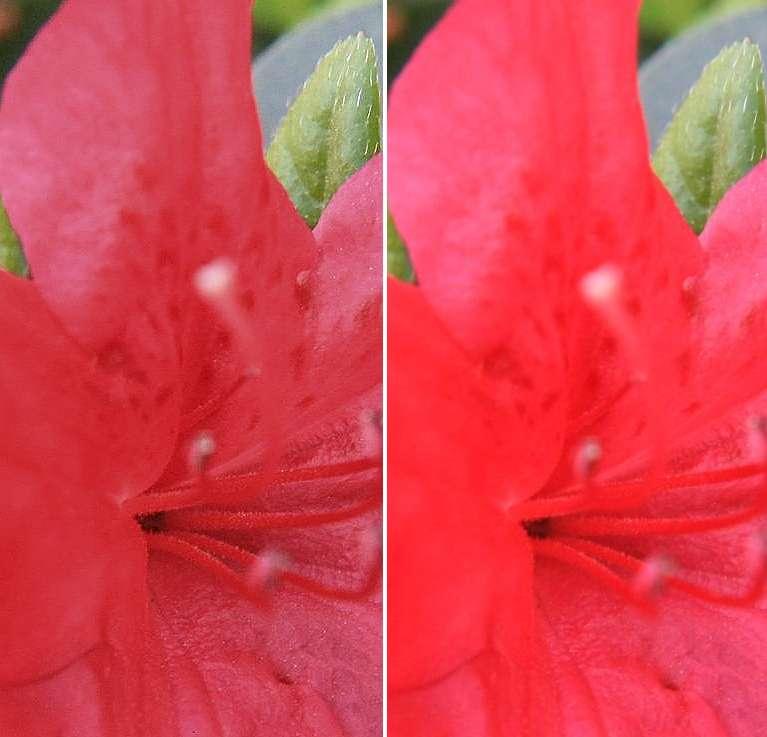 IMAGE: http://img710.imageshack.us/img710/9477/redwd.jpg